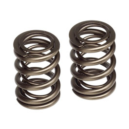 Skunk2 Racing Valve Springs